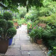 Visit a garden - Risingholme Road (Harrow)