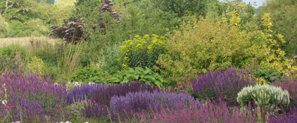 Visit a garden - Long House Plants (Romford)