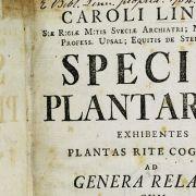 Linnean Lens: Carl Linnaeus' Species Plantarum and Naming Nature